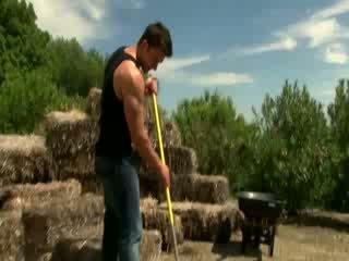 Homofil hingst deserves hans stroke etter en days arbeid i den felt
