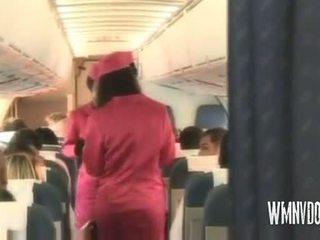Gorące airlines blondynka