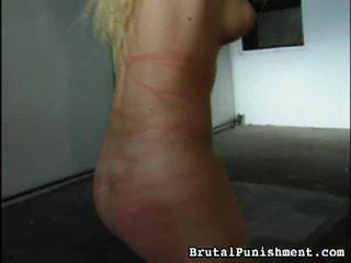 Groß sammlung von bdsm porno streifen aus brital punishment