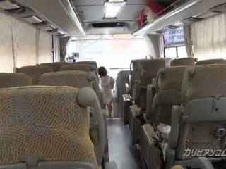 4x4 caribbean bas pelancongan bermula daripada zakar/batang menghisap
