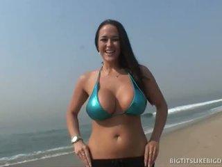 brünette, big dick, große brüste