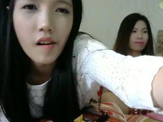 Find6.xyz girl yummy asian flashing pussy on live webcam
