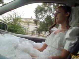 新娘 到 是 amirah adara ditched 由 她的 fiance 和 性交