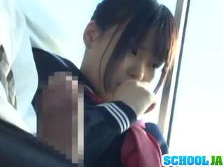Publike autobuz puts të saj moth brenda the autobuz riders lap