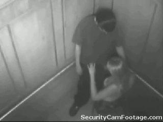 Malibog pareha sa elevator security kamera