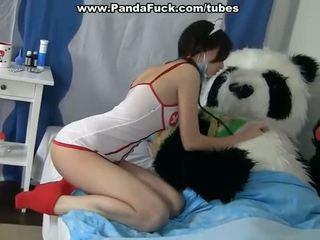 Smutsiga kön till härdning en sjuk panda