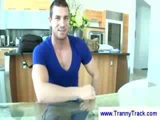 tits, shemale, tranny