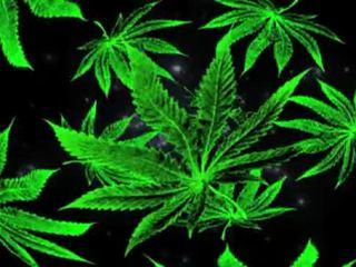 punk, smoke, stone, grass
