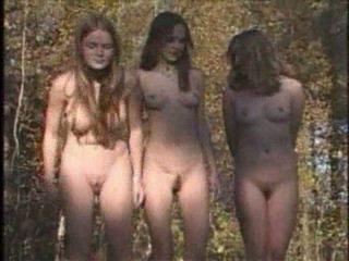 orgie (group), färsk voyeur fullständig, hetaste amatör