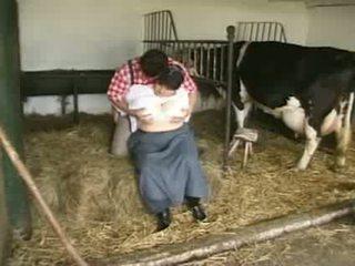 प्रदर्शन असली, पूर्ण दूध मुख्यालय, you