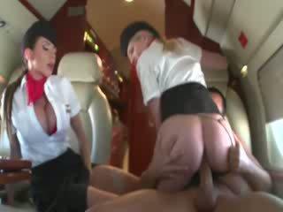Stewardesses ברכיבה a customers זין