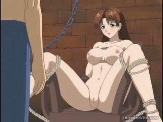 brunette, dessin animé, hentai