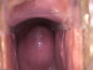 Inauntru vagin