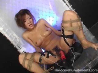 japanese, tortur, ekstrem, bundet