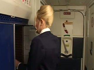 uniforme, stewardess