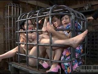 sex, humiliation, submission, bdsm, domination, punishment
