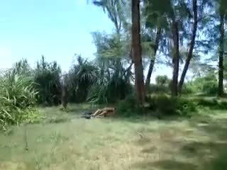 maid, outdoor, indonesian, hardcore