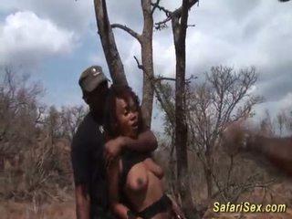 Ακραίο safari σεξ φετίχ όργιο <span class=duration>- 12 min</span>