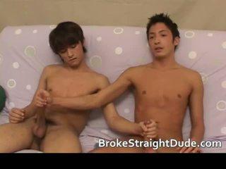 kolej, pelajar, gay