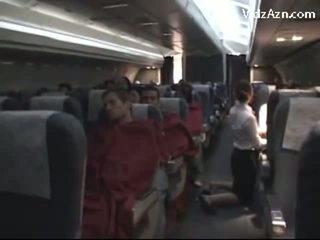Stjuarte raušana passenger & tasting viņa dzimumloceklis