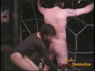 Extremely 角质 stallion likes being tied 向上 和 whipped